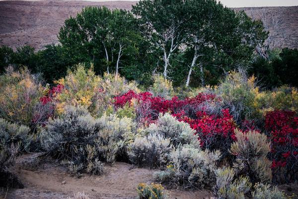 Yakima desert at twilight #1<br /> <br /> P373