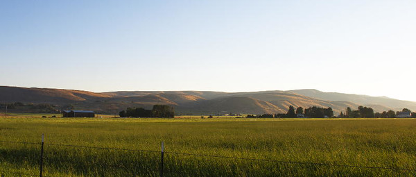 Kittitas Valley pastoral #4<br /> Kittitas Valley, Washington<br /> <br /> P370