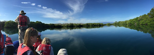 We took the panga boat from the ship and toured some of the inlets, seeing sea turtles, sea lions, and rays. This is Elizabeth Bay on Isla Isabel.