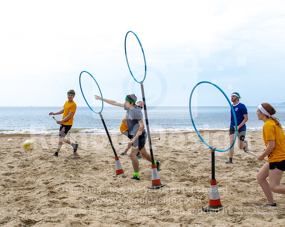 014 - Beach Quidditch 2: The Reckoning