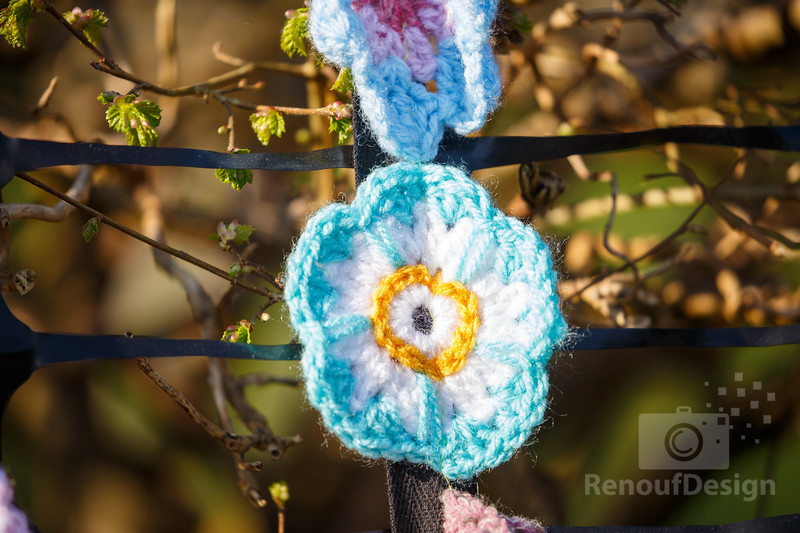 02 - Pennington Flowers