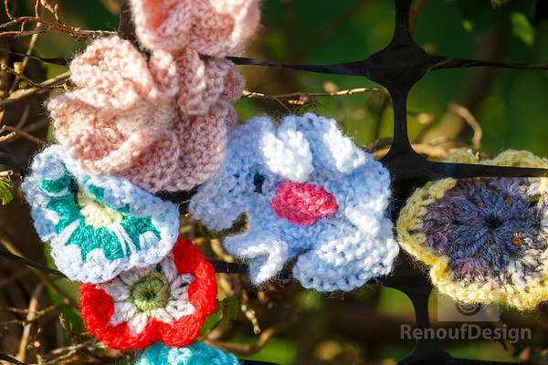 03 - Pennington Flowers