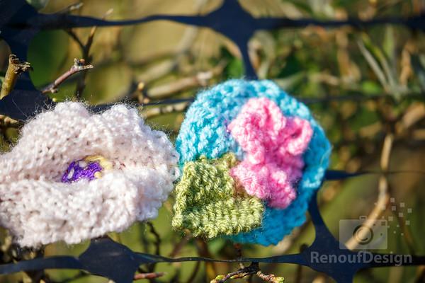 15 - Pennington Flowers