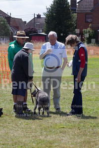 Dog Show and Fun Day - 008