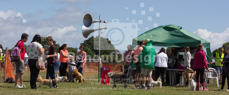 Dog Show and Fun Day - 019