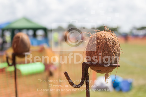 Dog Show and Fun Day - 006