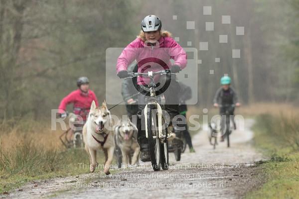 09 - Husky Racing