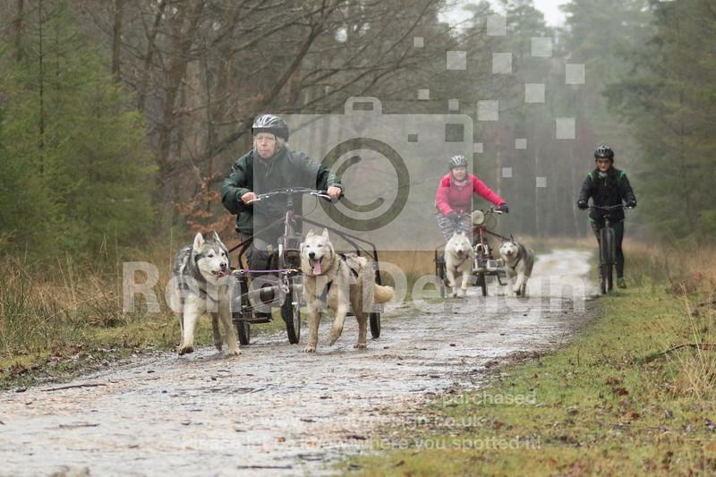 14 - Husky Racing