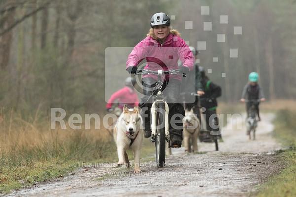 10 - Husky Racing