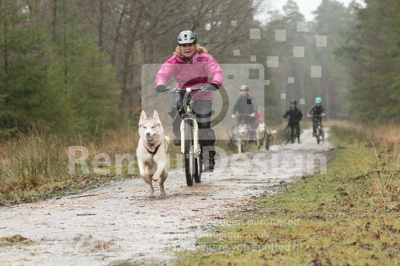 11 - Husky Racing