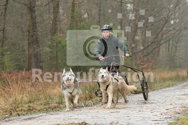 15 - Husky Racing