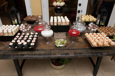 122615_Engagement_Party-3
