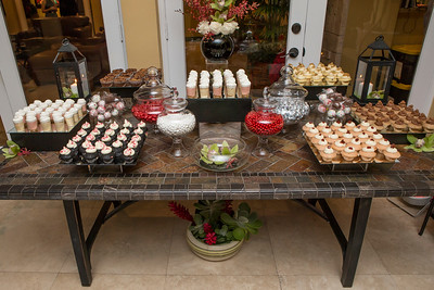122615_Engagement_Party-1