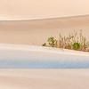 Blue Dune