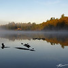 Early morning fall color scenery over DeLong Lake