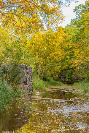Beautiful early season fall colors throughout Ledges State Park