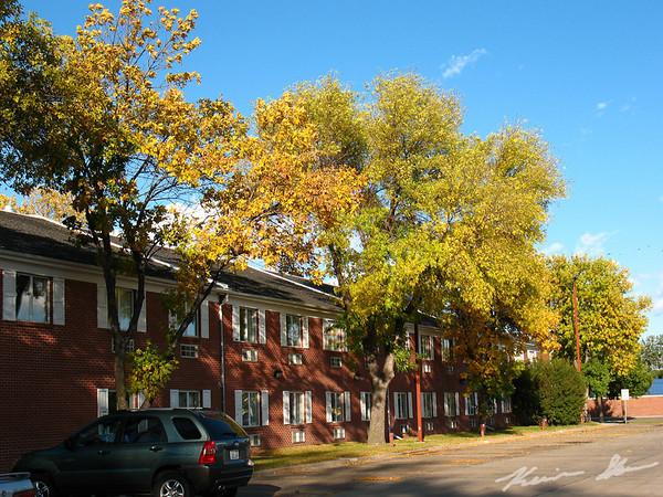 Fall colors at Dakota Hall