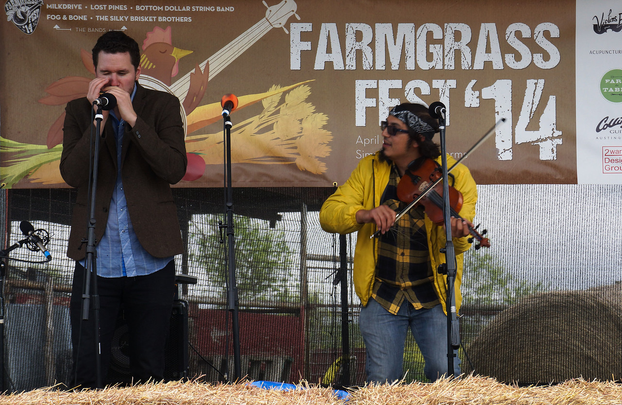 Blowing Bluegrass
