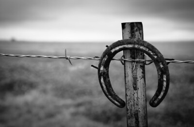 Texas Fence Post