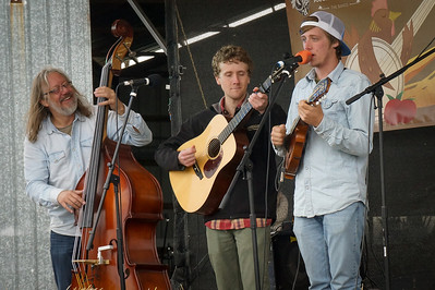 Bottom Dollar String Band