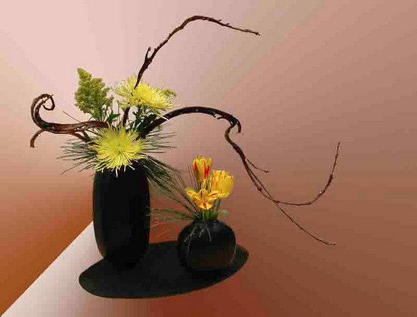 Ikebana in brown<br /> <br /> P065