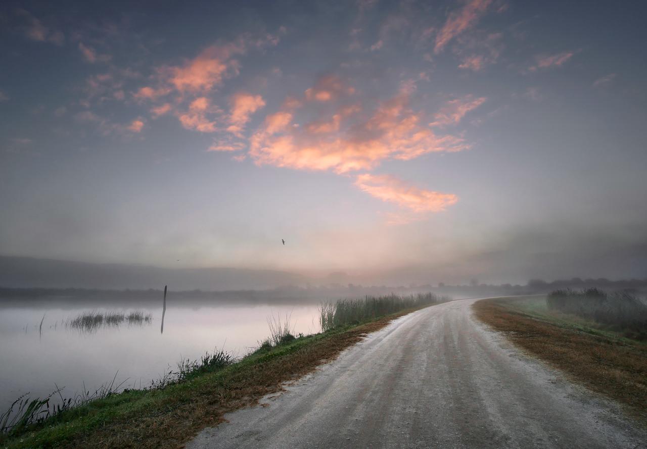 Dirt road at dawn.