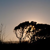 Fort Fisher<br /> best print size - 8x12 or 12x18