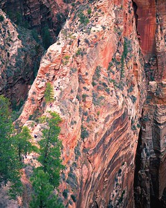 Angels Landing, Zion National Park, UT