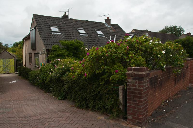 Alasdair's home photos-87