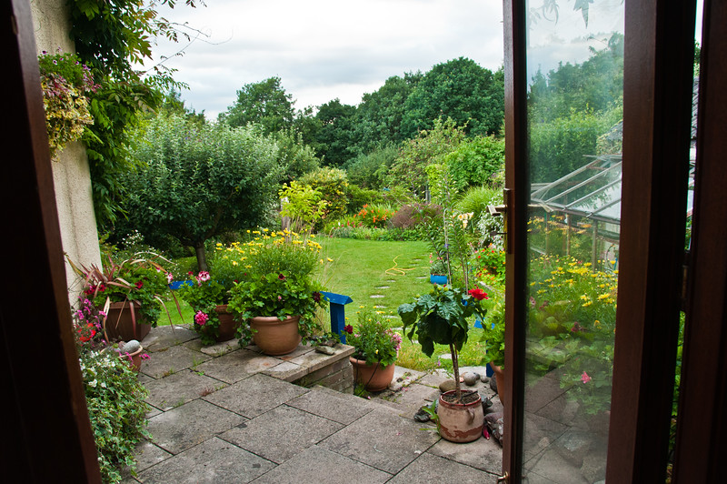 Garden from inside, by Chris-5