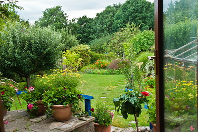 Garden from inside, by Chris-4