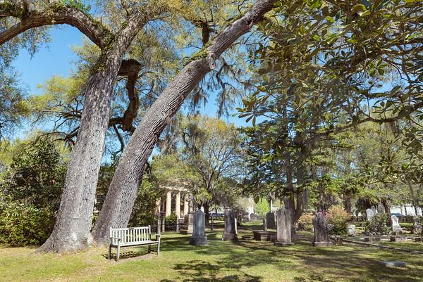 Georgetown_All Saints Church Cemetery_7774