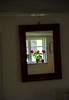 Window with geranium #10<br /> Gross Zicker, Germany<br /> <br /> P356