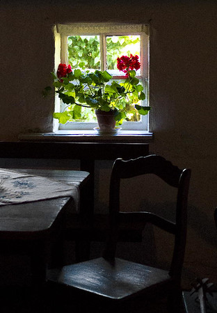 Window with geranium #6<br /> Gross Zicker, Germany<br /> <br /> P352