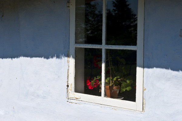 Window with geranium #3<br /> Gross Zicker, Germany<br /> <br /> P317