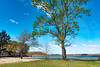 Slip Away_Old Federal Park_4085