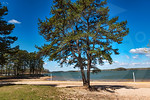 Slip Away_Old Federal Park_4076