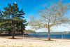 Slip Away_Old Federal Park_4083