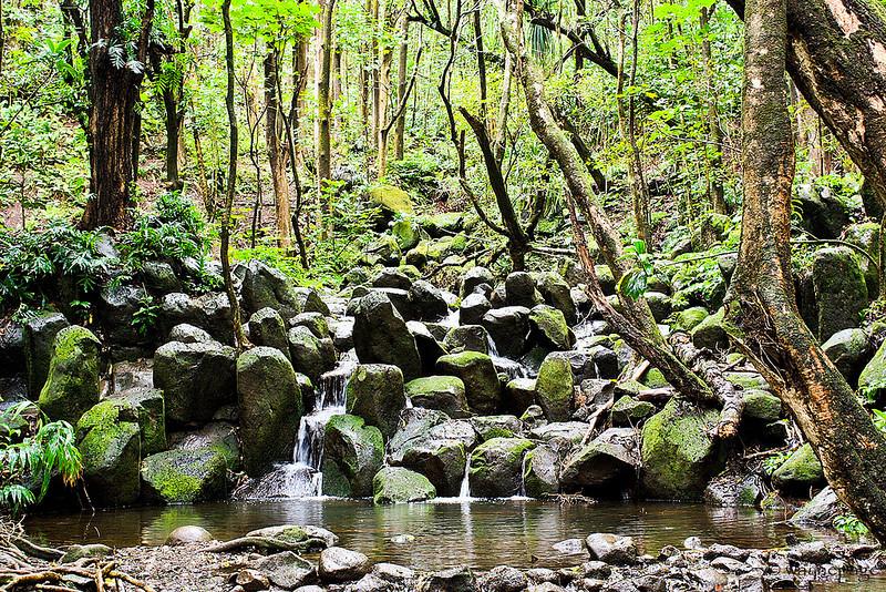 Kauai Kings Bath