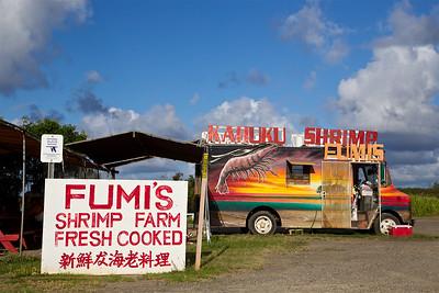 HI-150608-0004 Shrimp Truck