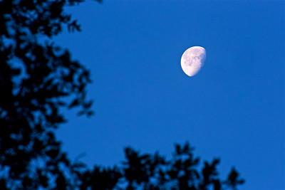 PF-190125-0004 Moon in the morning