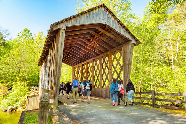Helen_Smithgall Woods Covered Bridge_5501