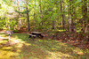 Helen_Smithgall Woods Parkside_5453