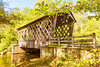 Helen_Smithgall Woods Covered Bridge_5502
