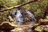 Helen_Smithgall Woods Waterfall_5594