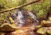 Helen_Smithgall Woods Waterfall_5612