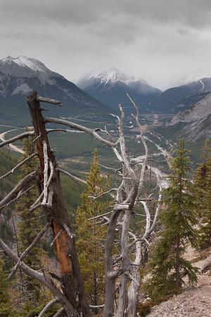 Mt Baldy 2014