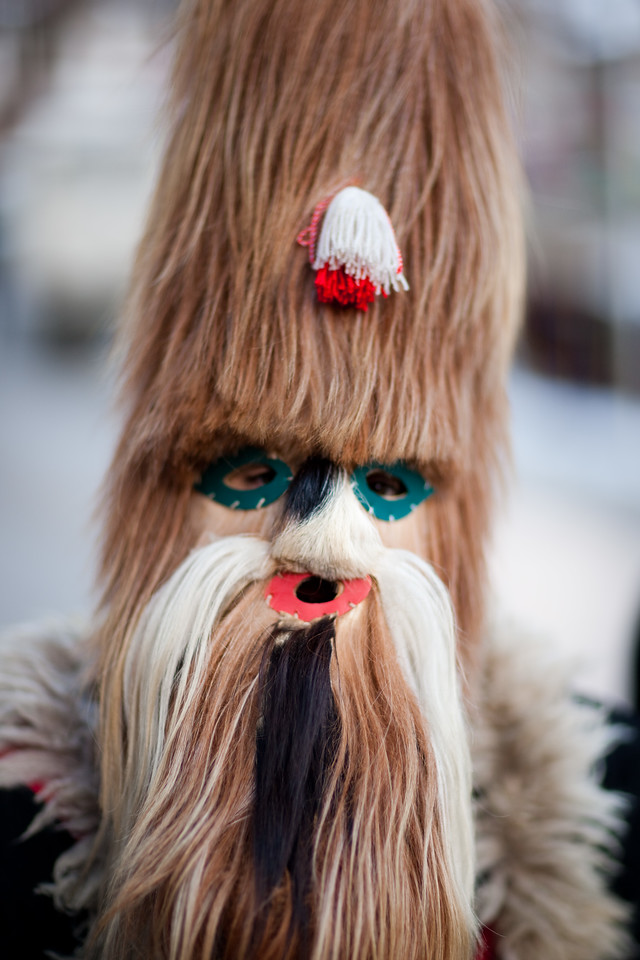 They kind of remind me of Chewbacca... Chewbacca and my older sister...