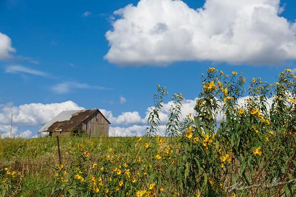 A Prairie Life