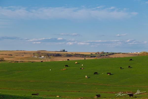 The sun bathes the western Iowa countryside